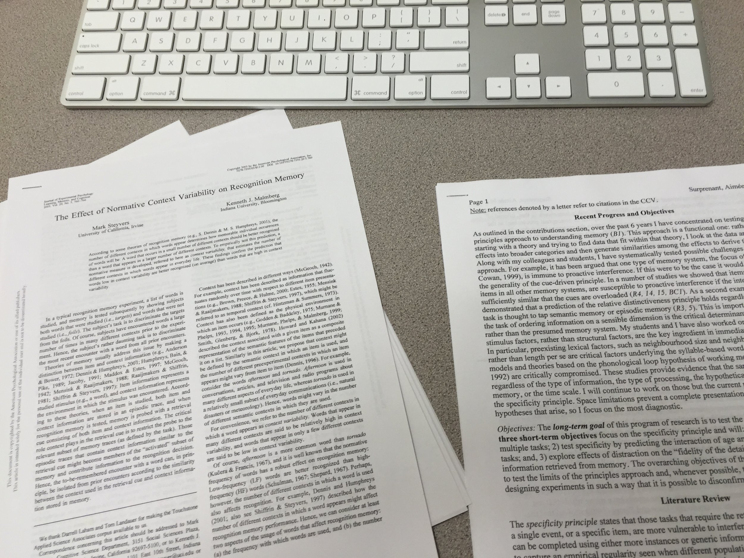 Journal articles from Lauren's research at the Memorial Cognition Lab