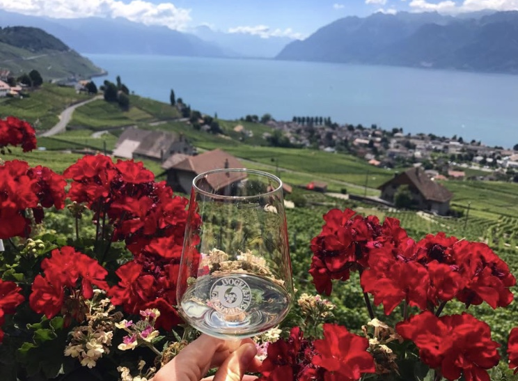 A view of Lake Geneva from the Lavaux vineyards.