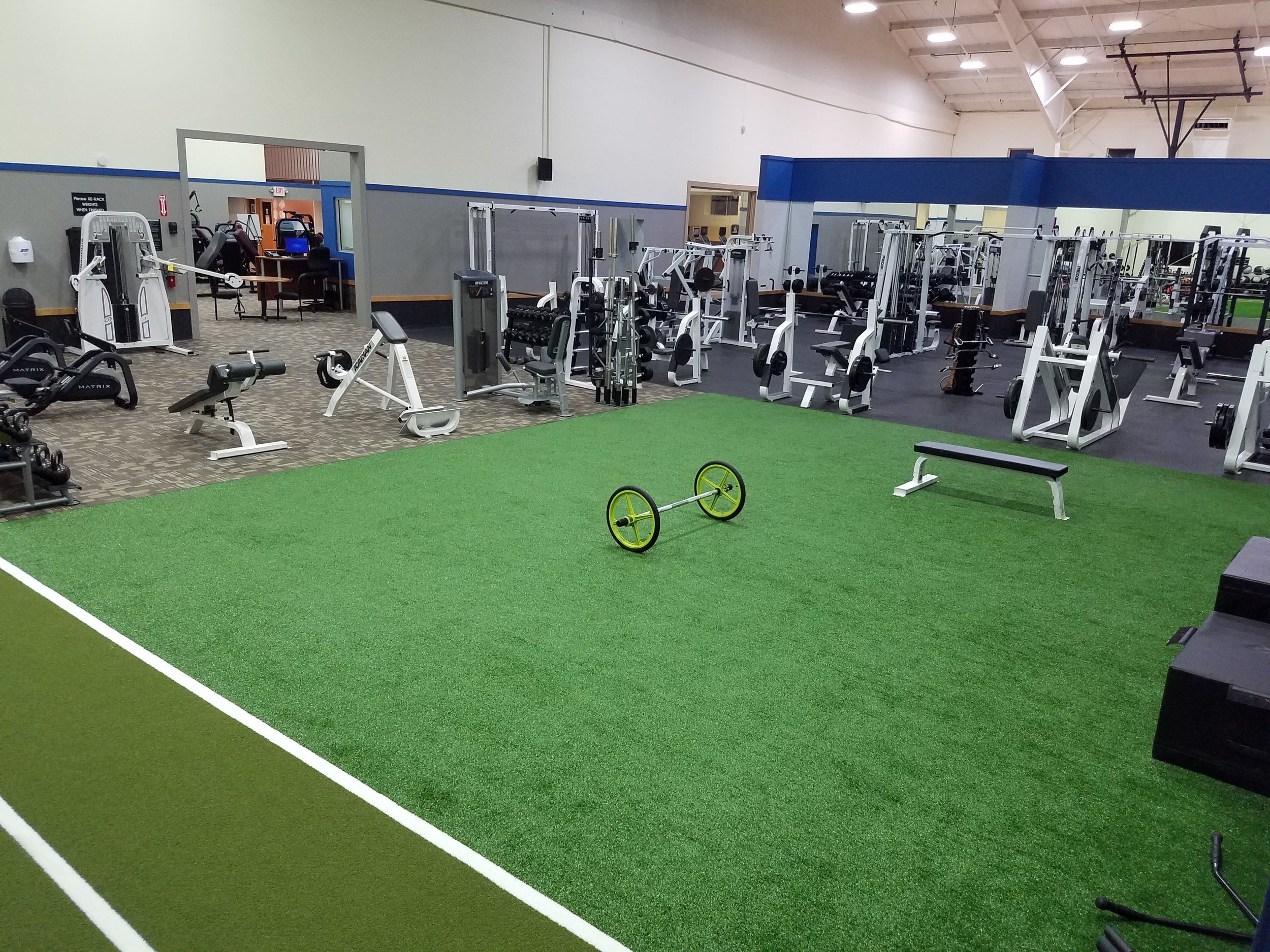 BR sled track and turf.jpg