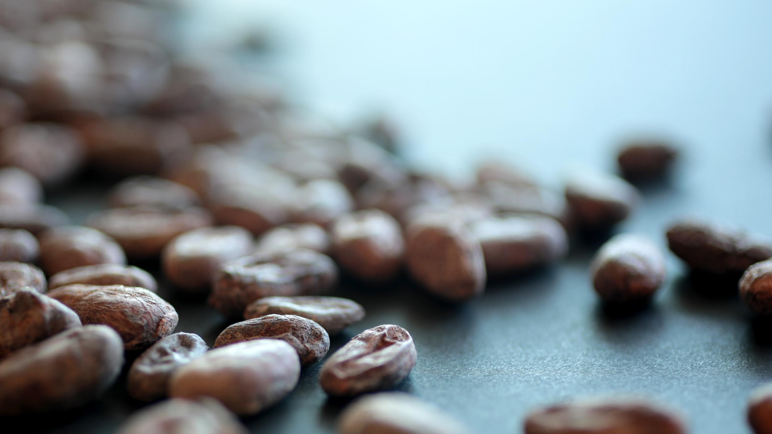 Filipino Cacao.jpg
