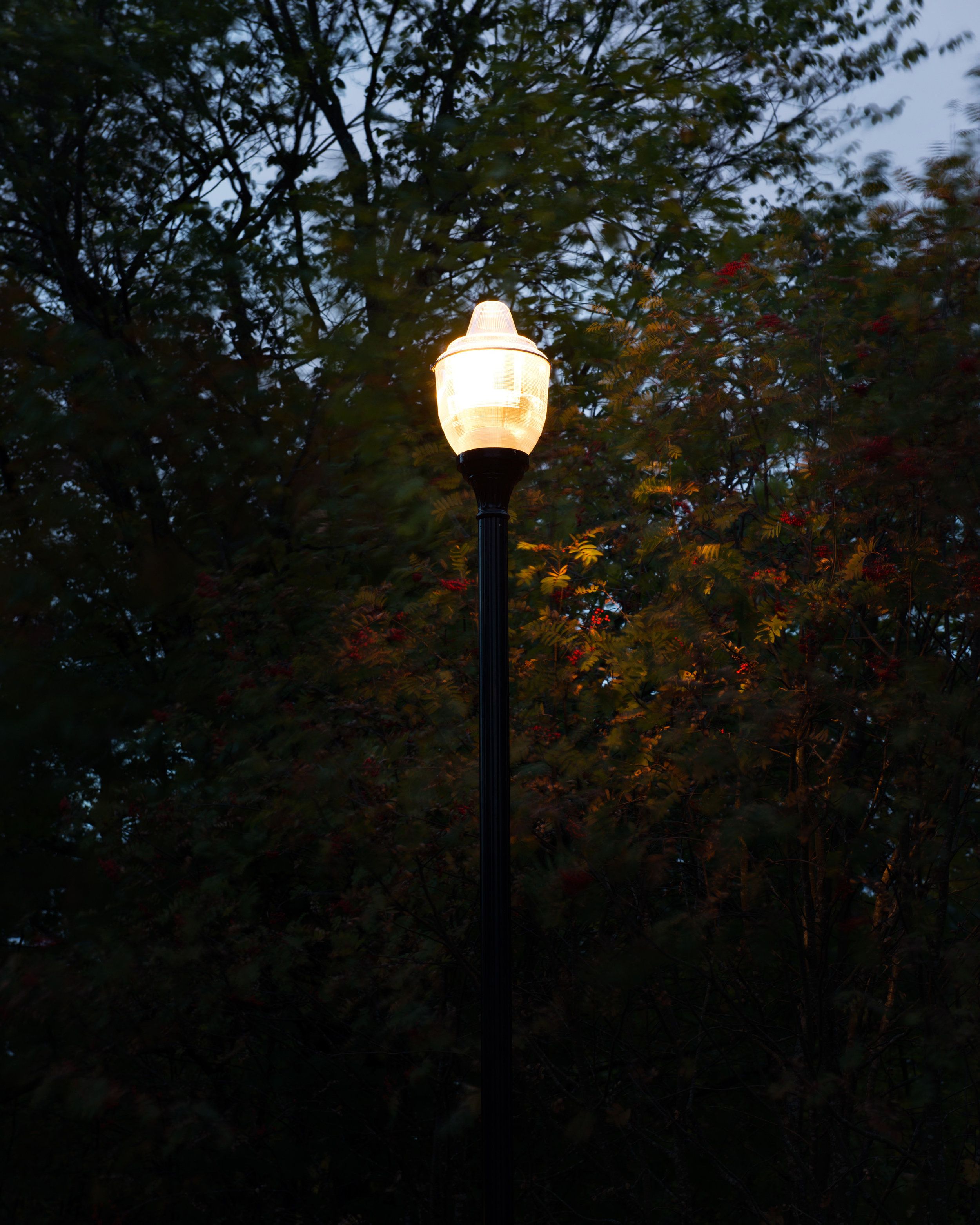 Tony Oursler, Spectral Power 2013, Ekeberg parken 1.jpg