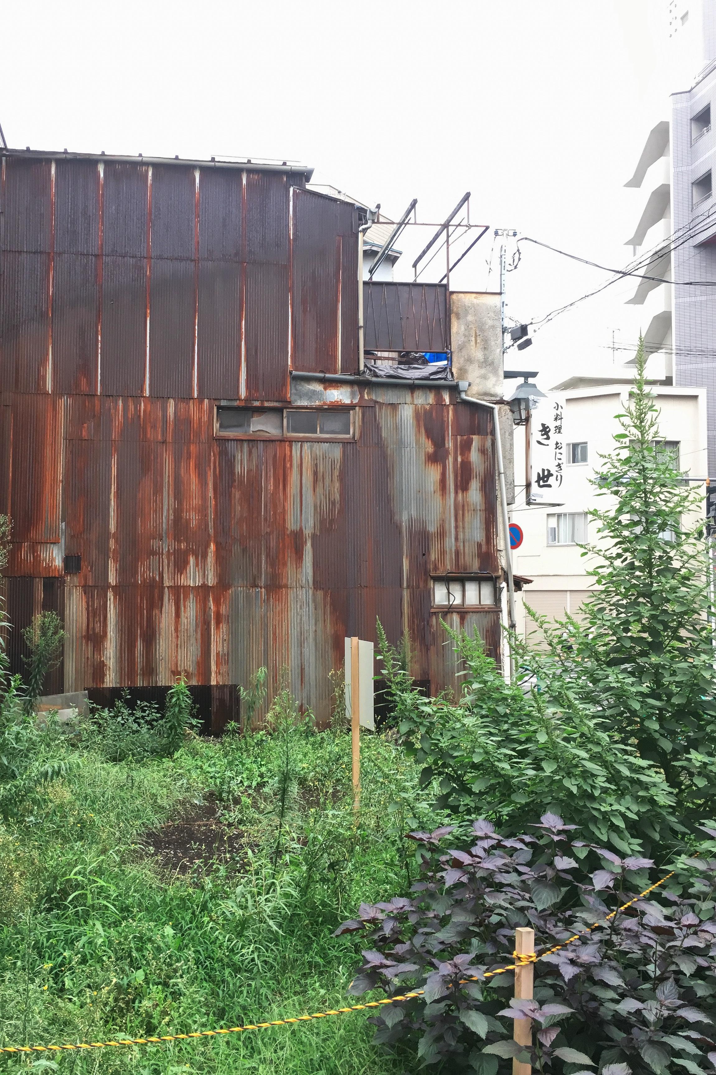 Paranormal totan. Location: Kichijoji, Tokyo