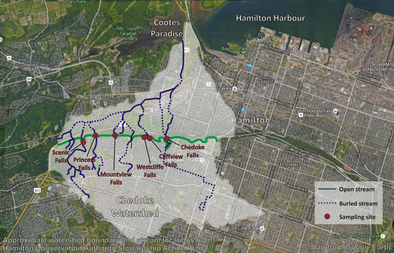 Chedoke Watershed