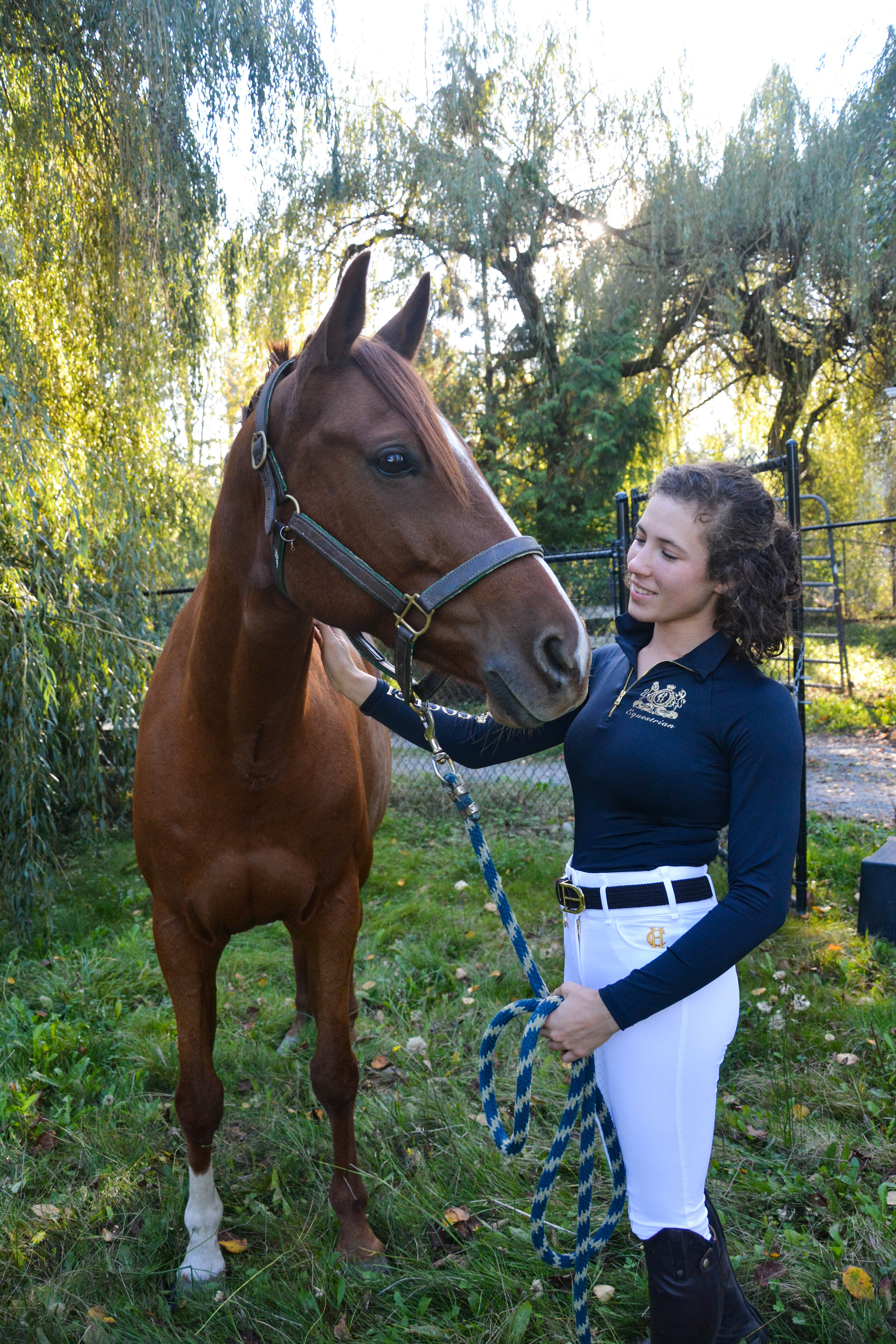 Blog Milestone Equestrian