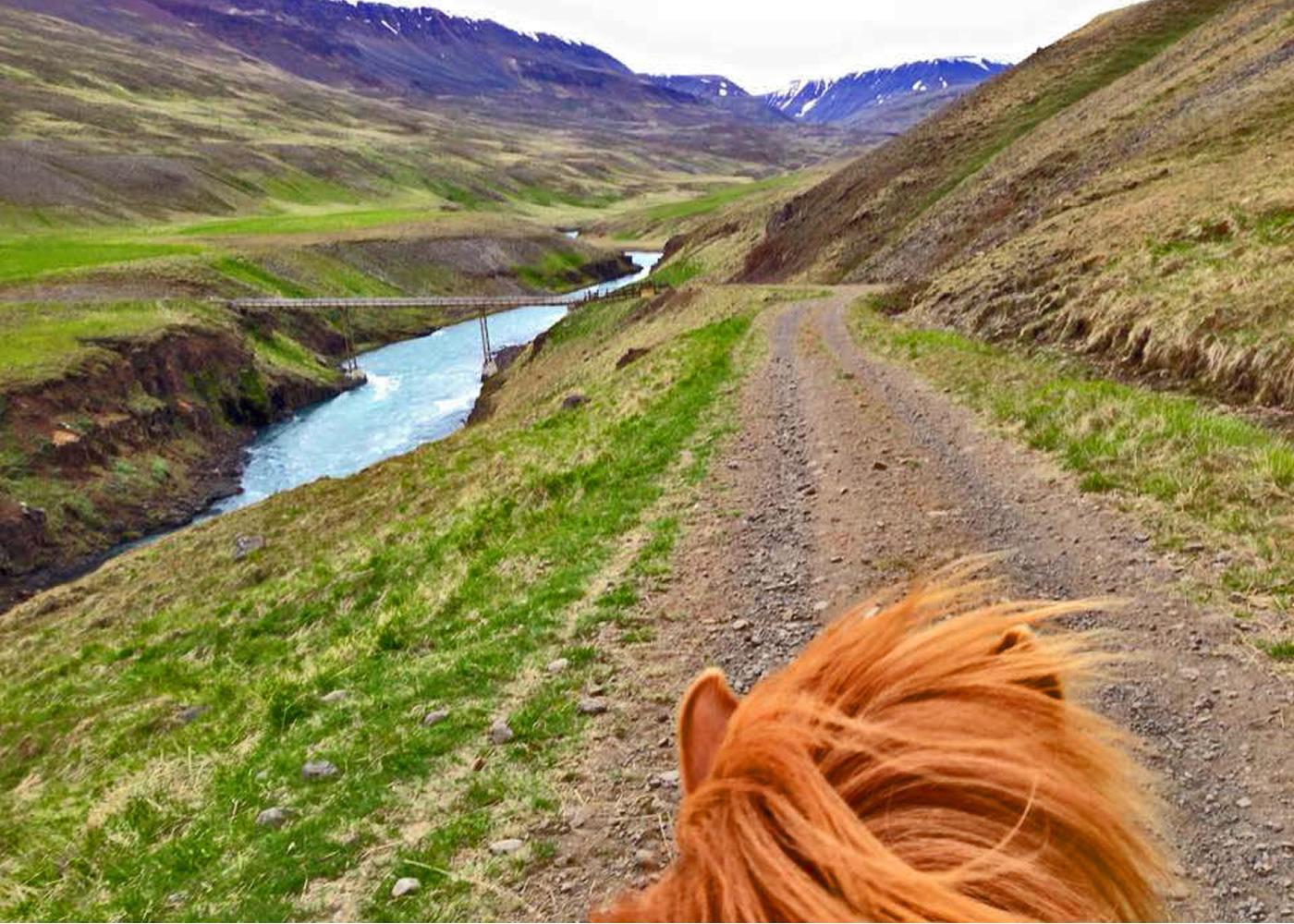 - 3.5 days exploring Skagafjörður atop Icelandic Horses.