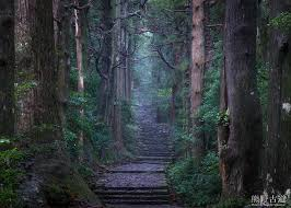 - Strenuous hikes through an ancient forest