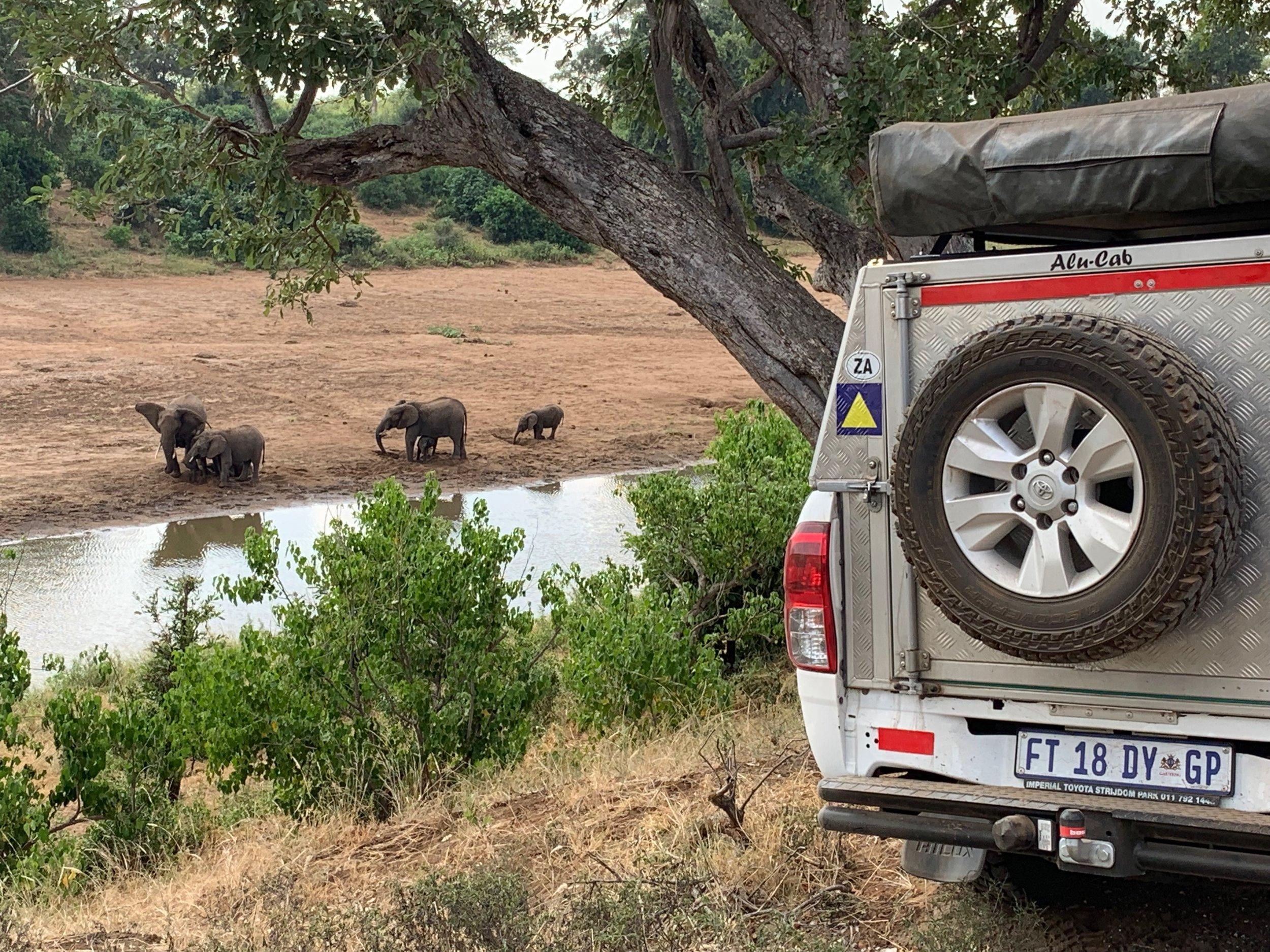 A 1000km Self-Drive Safari