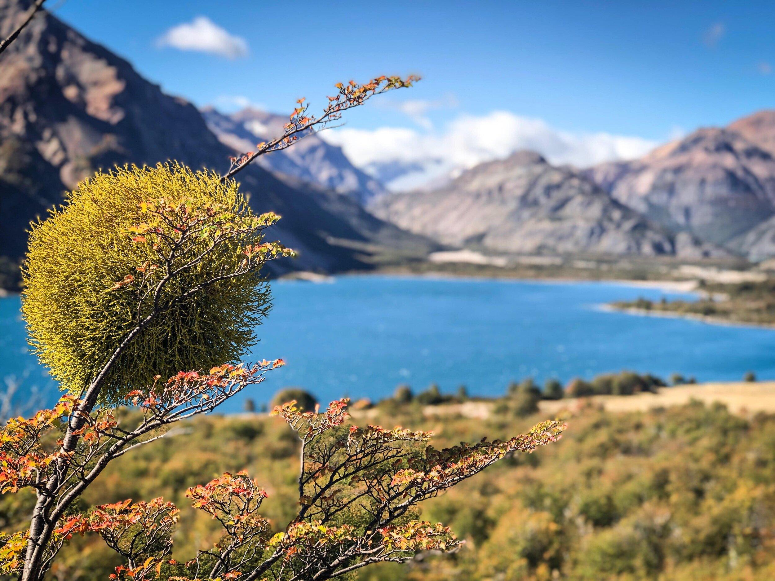View Lago Jeinimeni.JPG