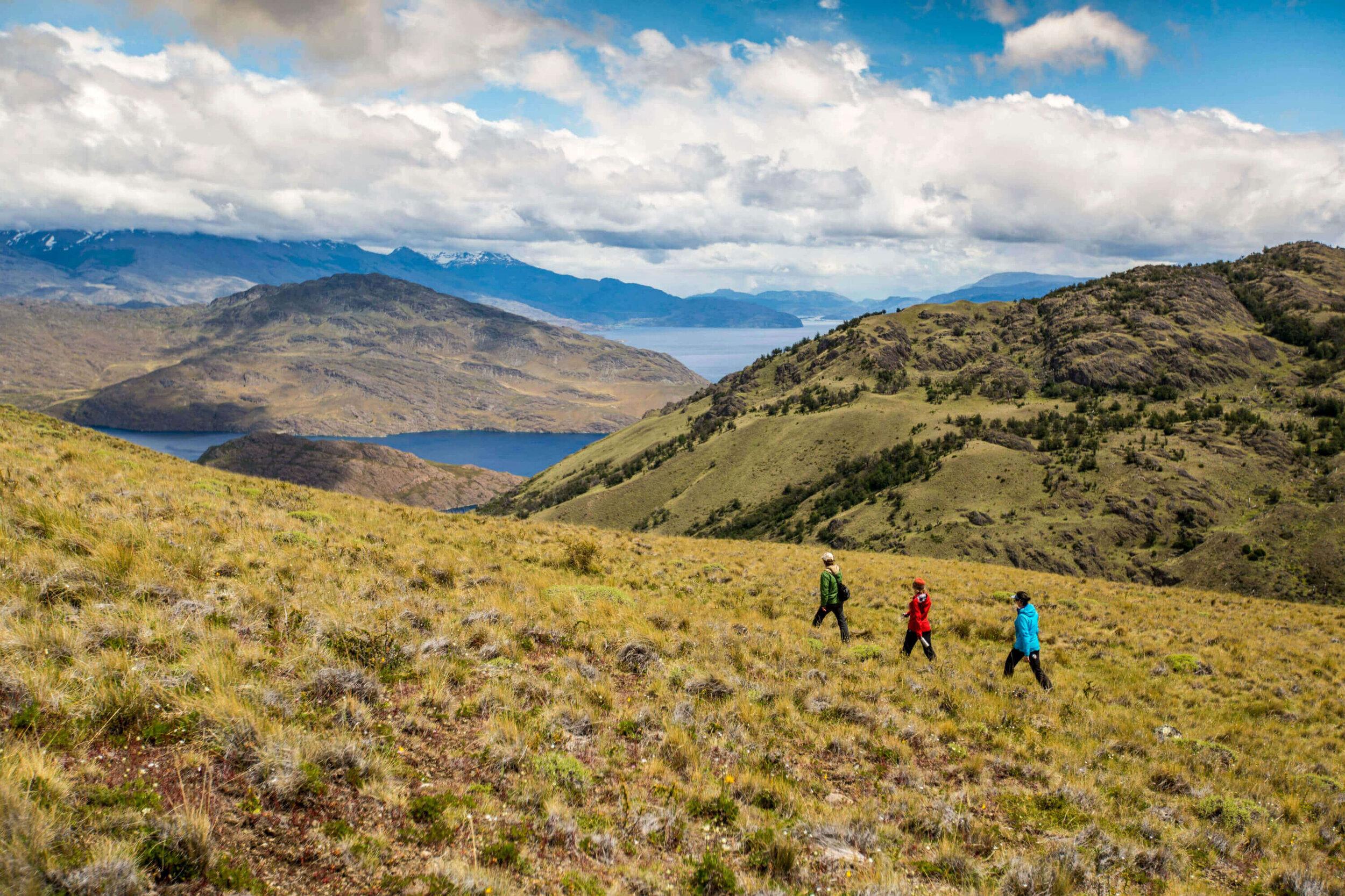 Parque-Nacional-Patagonia-6.jpg