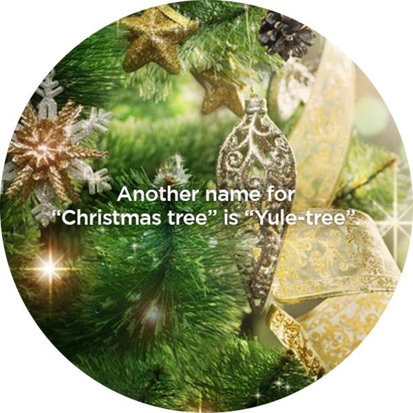 Circle_Christmas-Fun-Fact_1B.jpg