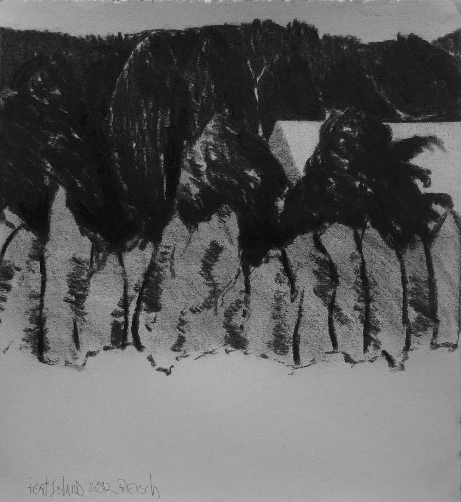 Peat Island drawing  -2015-charcoal/paper -41x38cm