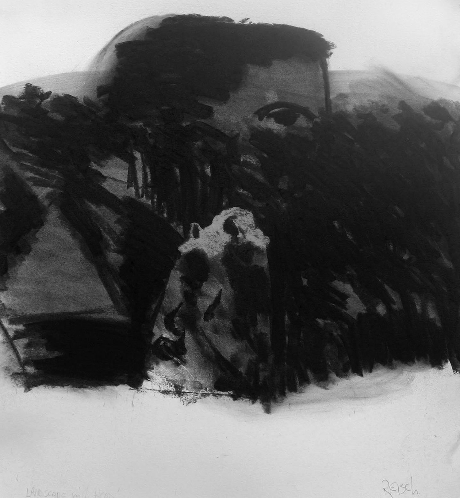 In search of Icarus - 2015-charcoal/paper -41x38cm