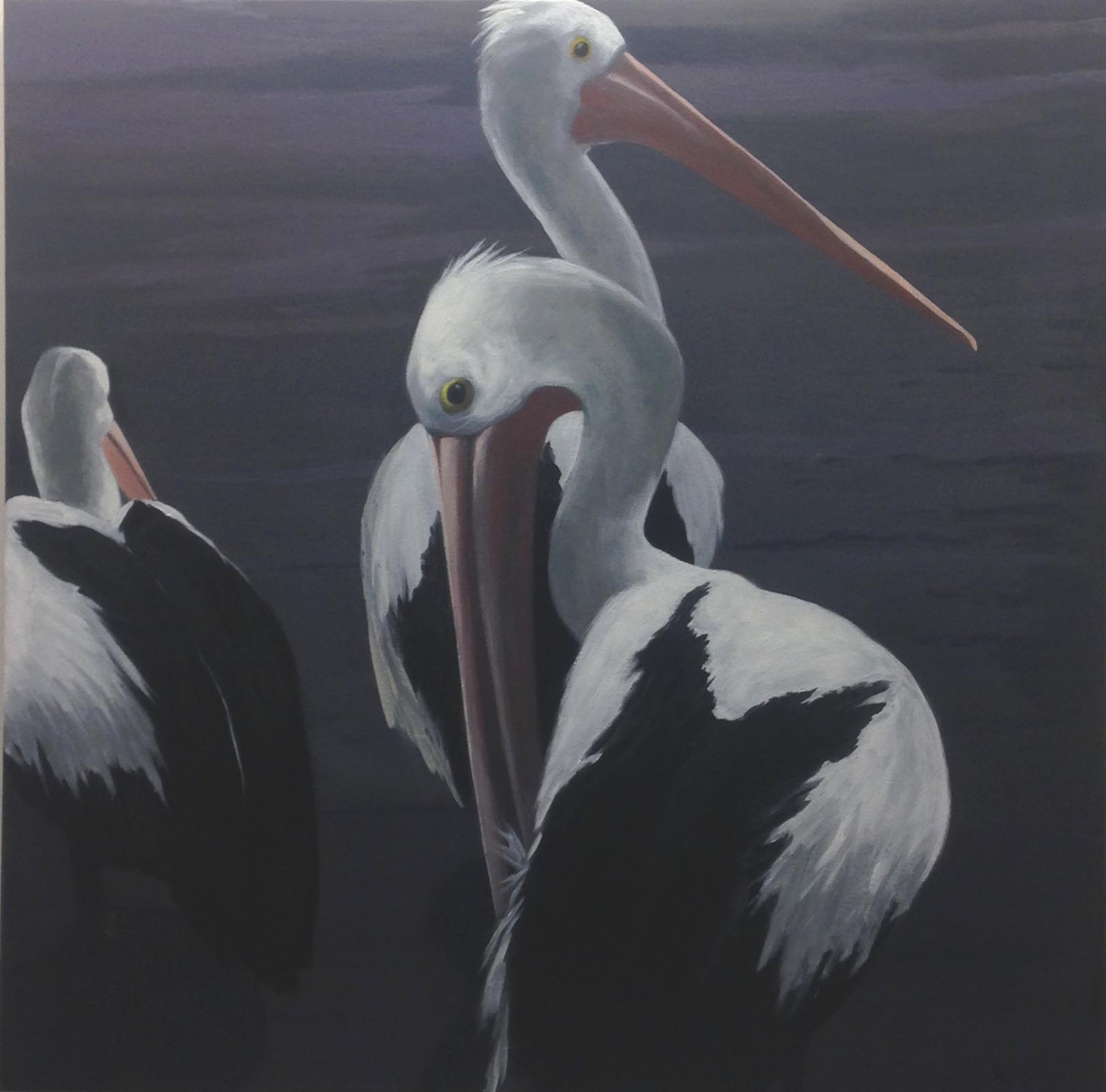 Pelican Group   - oil on canvas-92x92cm  ($3,000)
