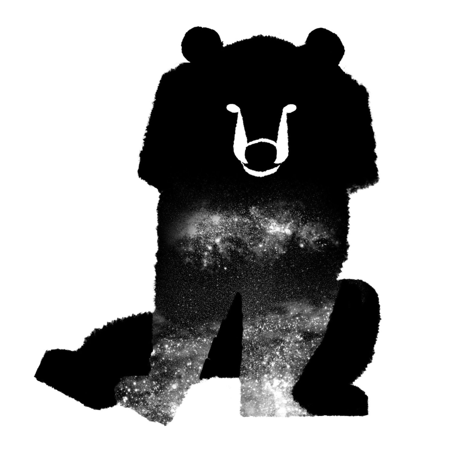 Bear Spot Illustration