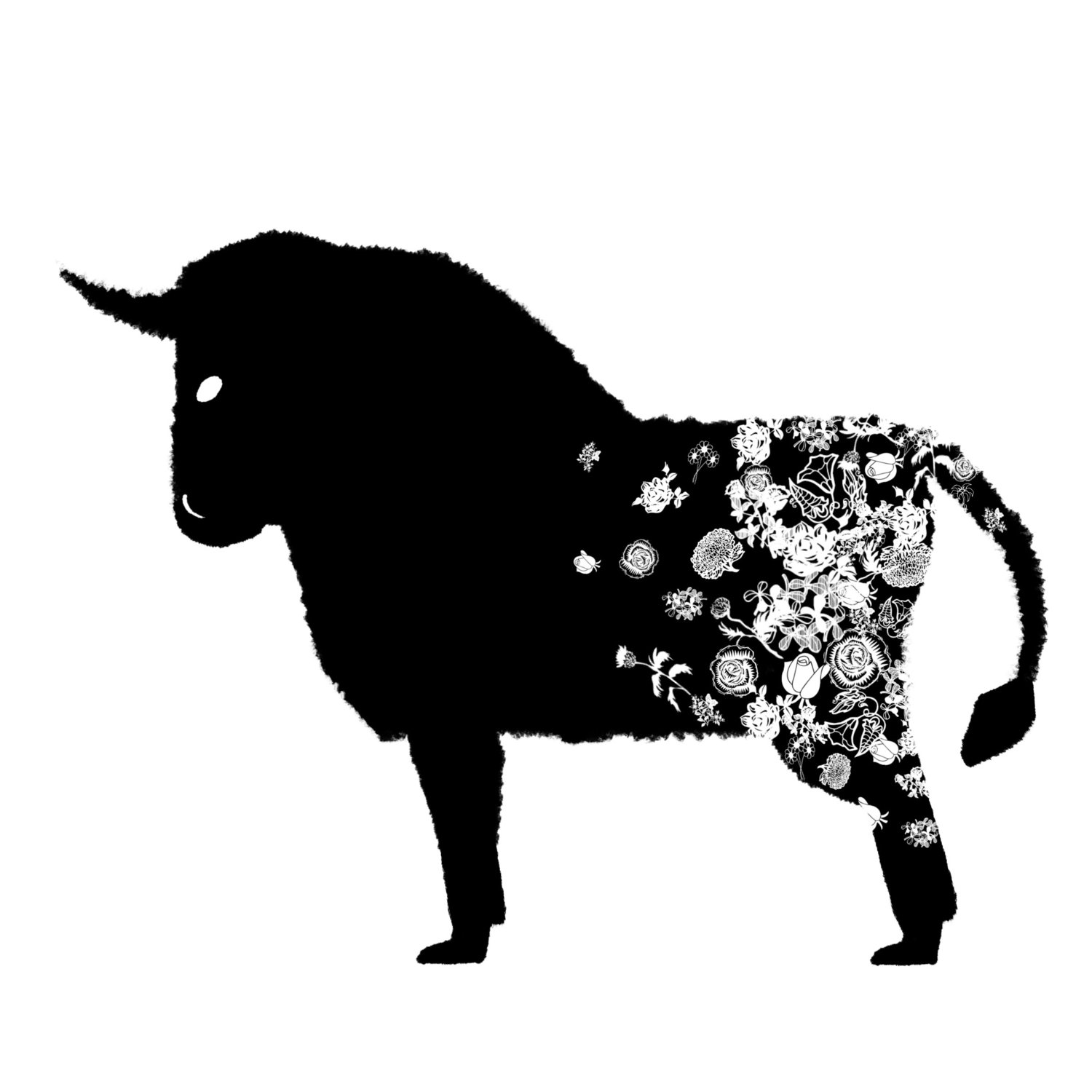 Bull Spot Illustration