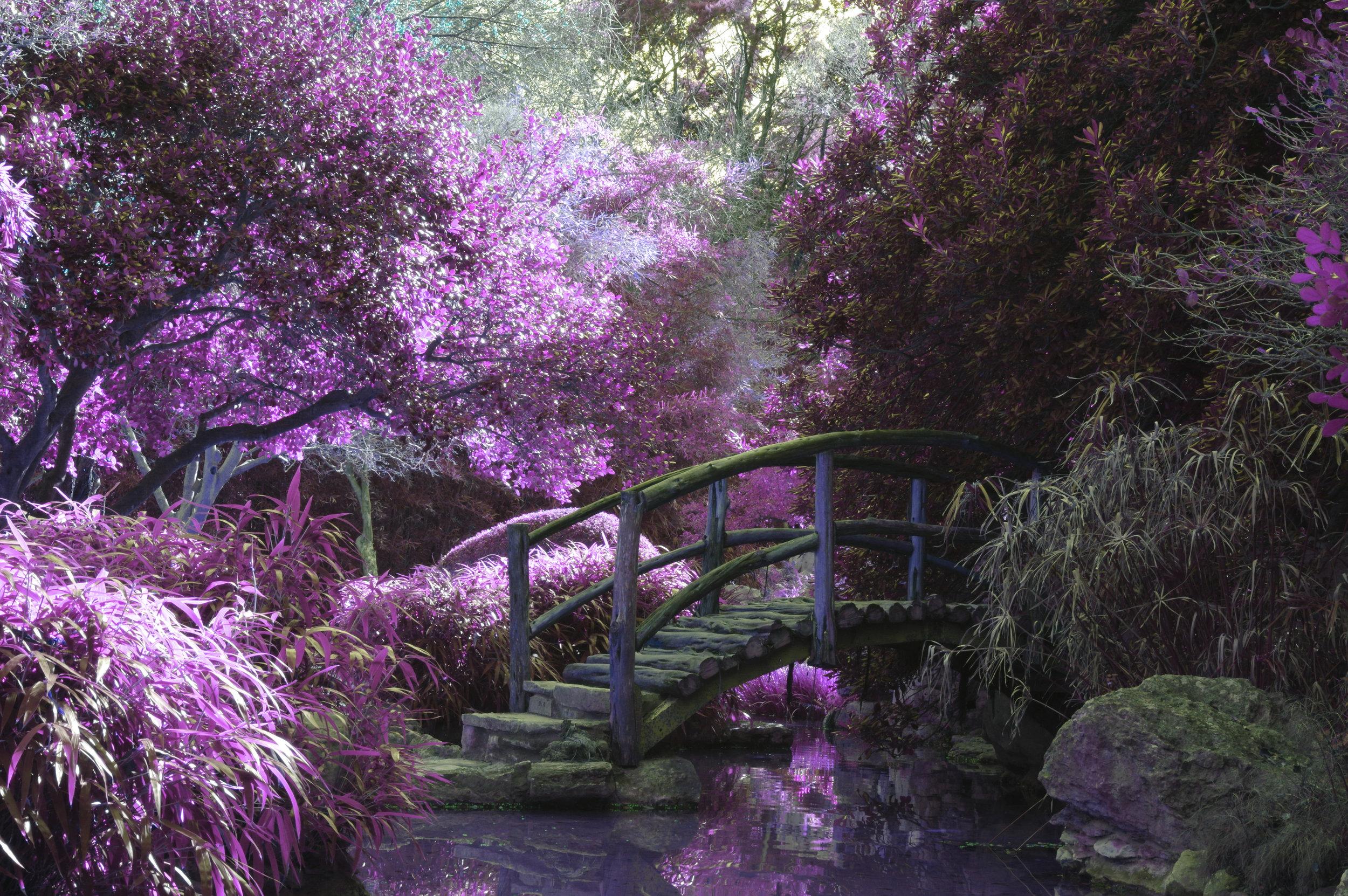 Arboretum Venue Yakima