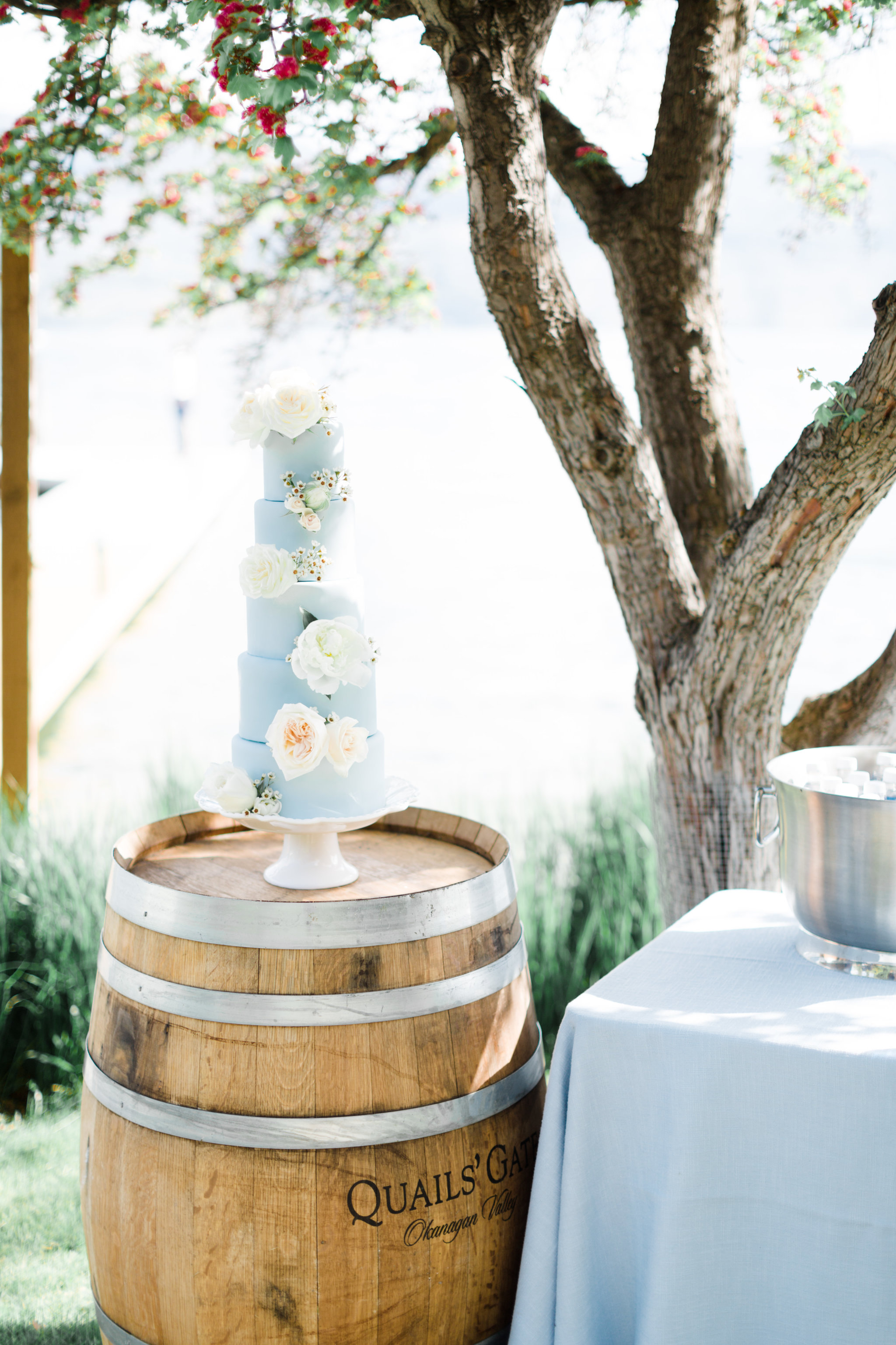 Brittany and Bobby Wedding - Best Wedding Planning under 75k2.jpg