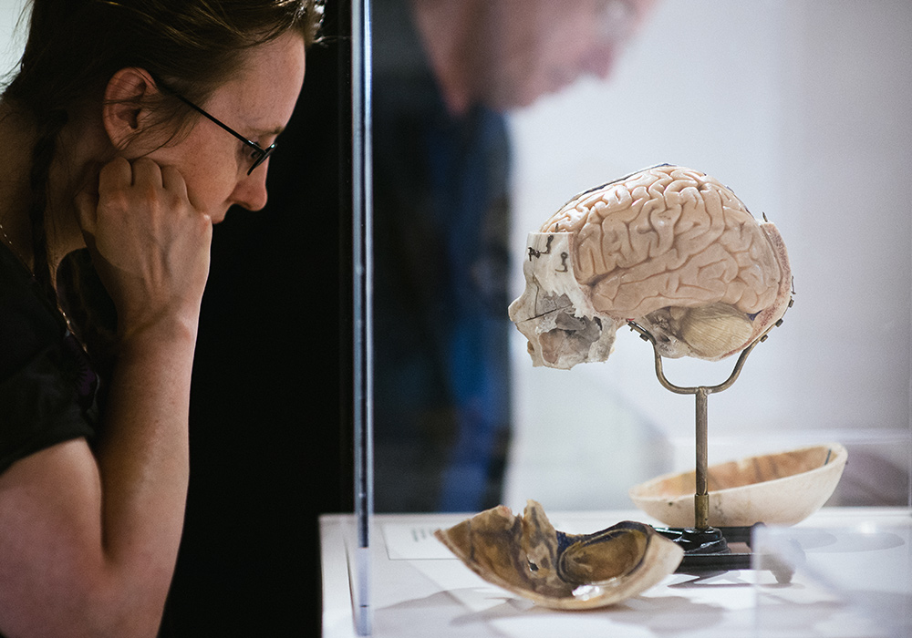 We are building the first museum and learning center in the world that is fully dedicated to the human brain. -