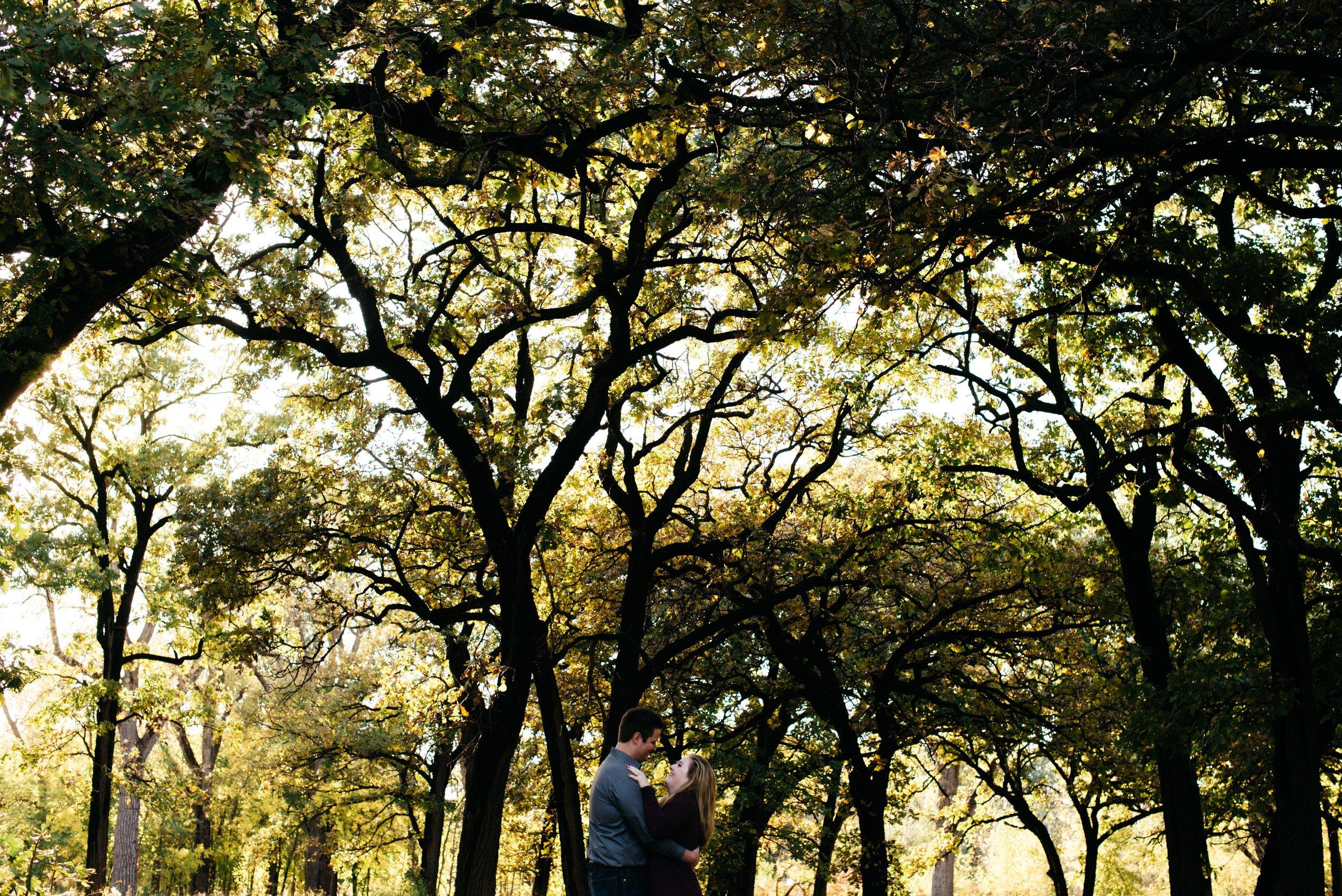 Autumn Engagement Minnehaha Falls