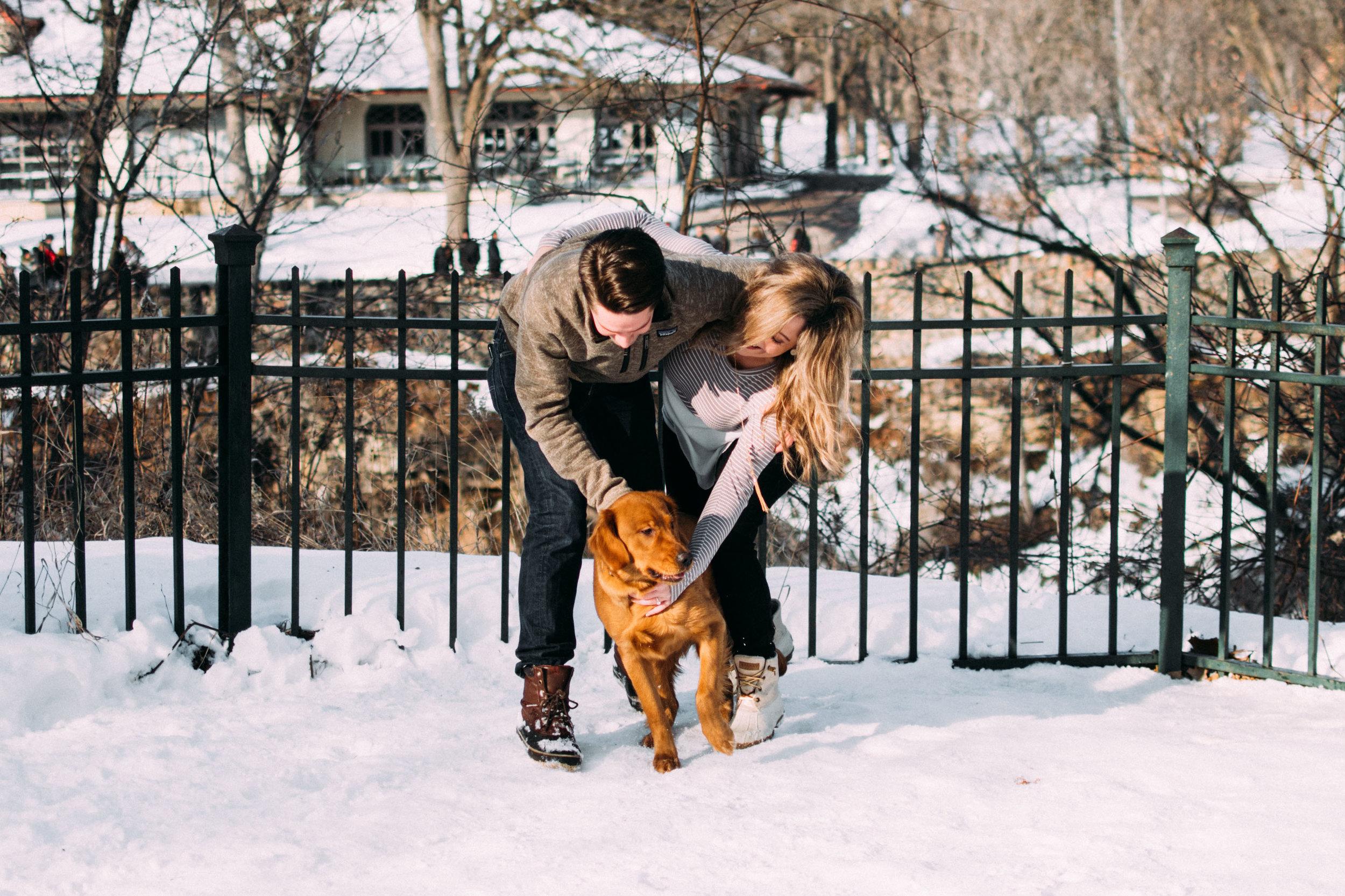 8-Dogs_at_Engagement_Photos_Minnesota.jpg