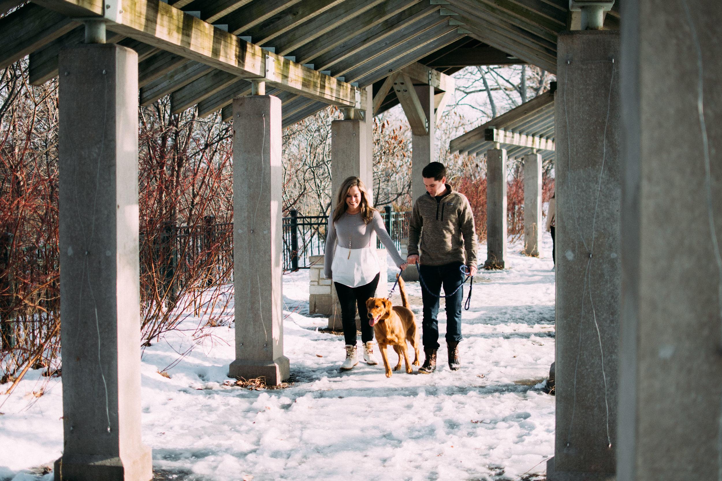 6-Dogs_at_Engagement_Photos_Minnesota.jpg