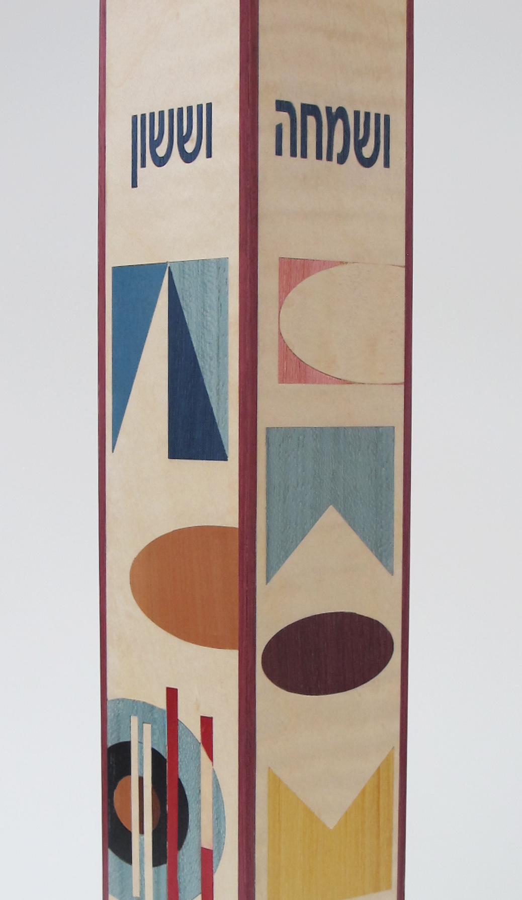 Colorful Modern Megillah Case