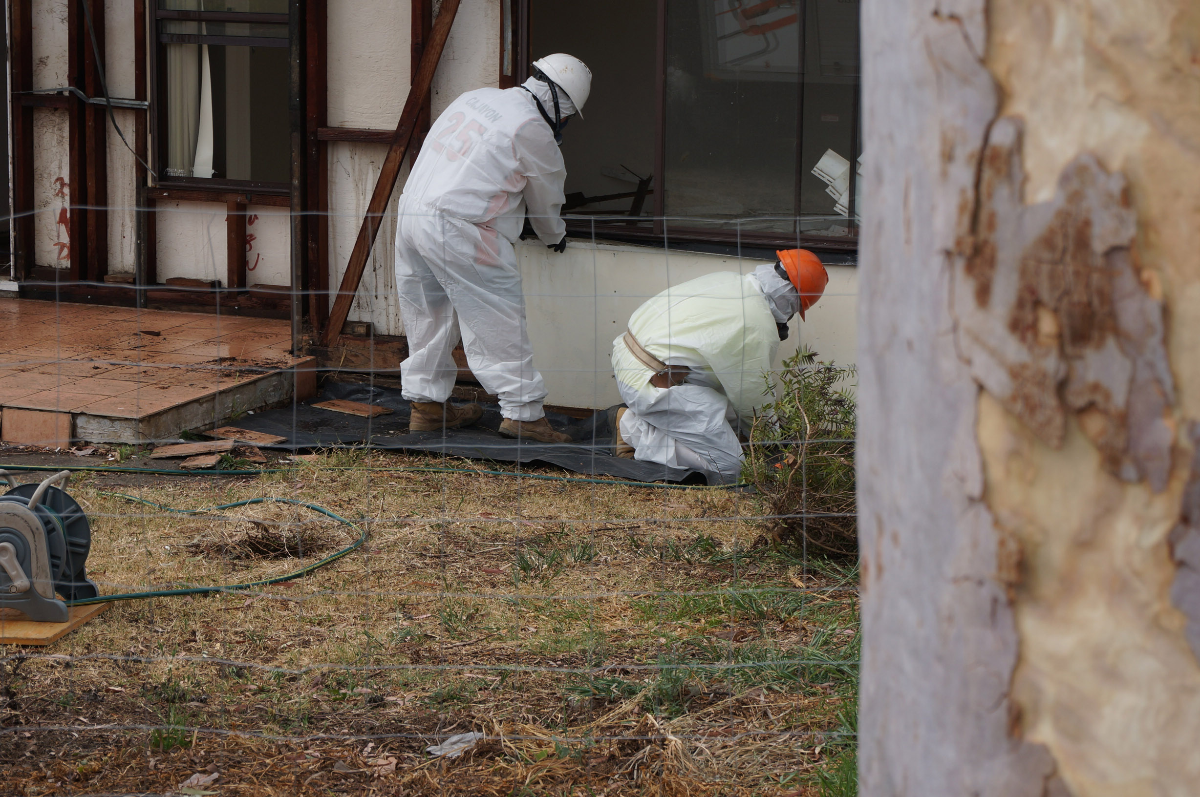 Our asbestos removal labourers in action, removing asbestos sheeting from an asbestos clad home due for demolition.