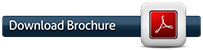 download-pdf-button-worldmarketskorea.png