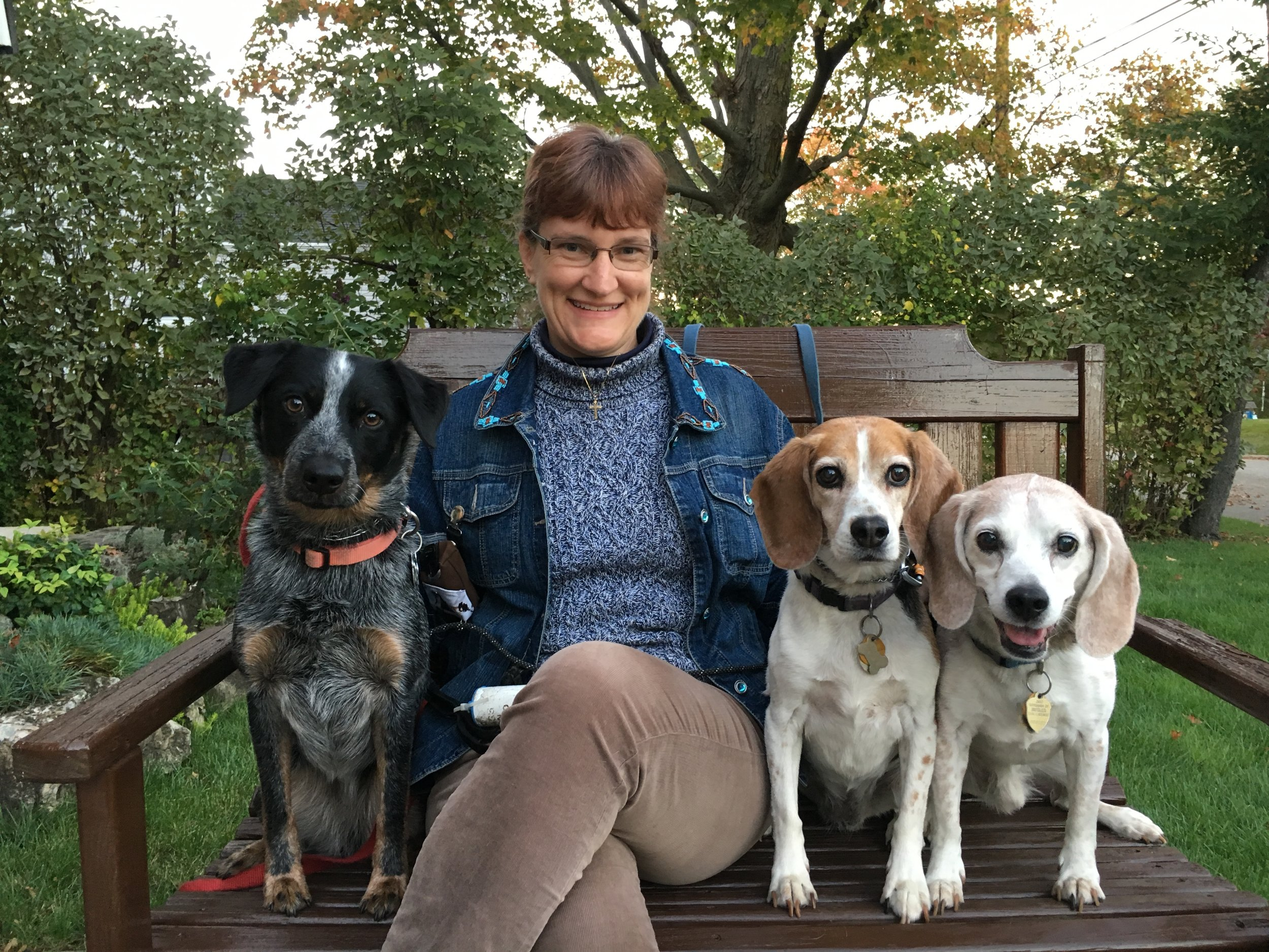 Susan Cole - Calm Family Dog Training