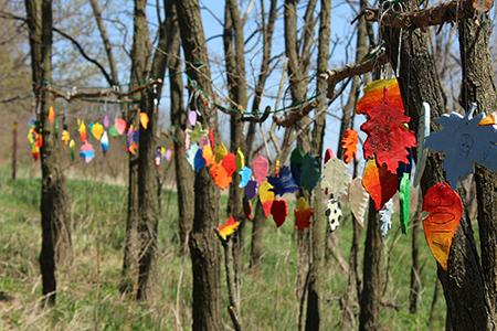 hanging leaves.jpg