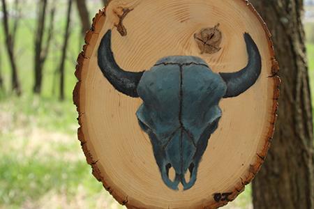 z buffalo.jpg