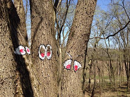 z tree spirits.jpg