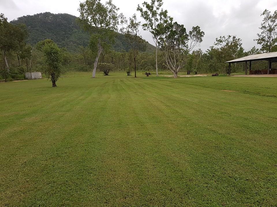 shed lawn.jpg