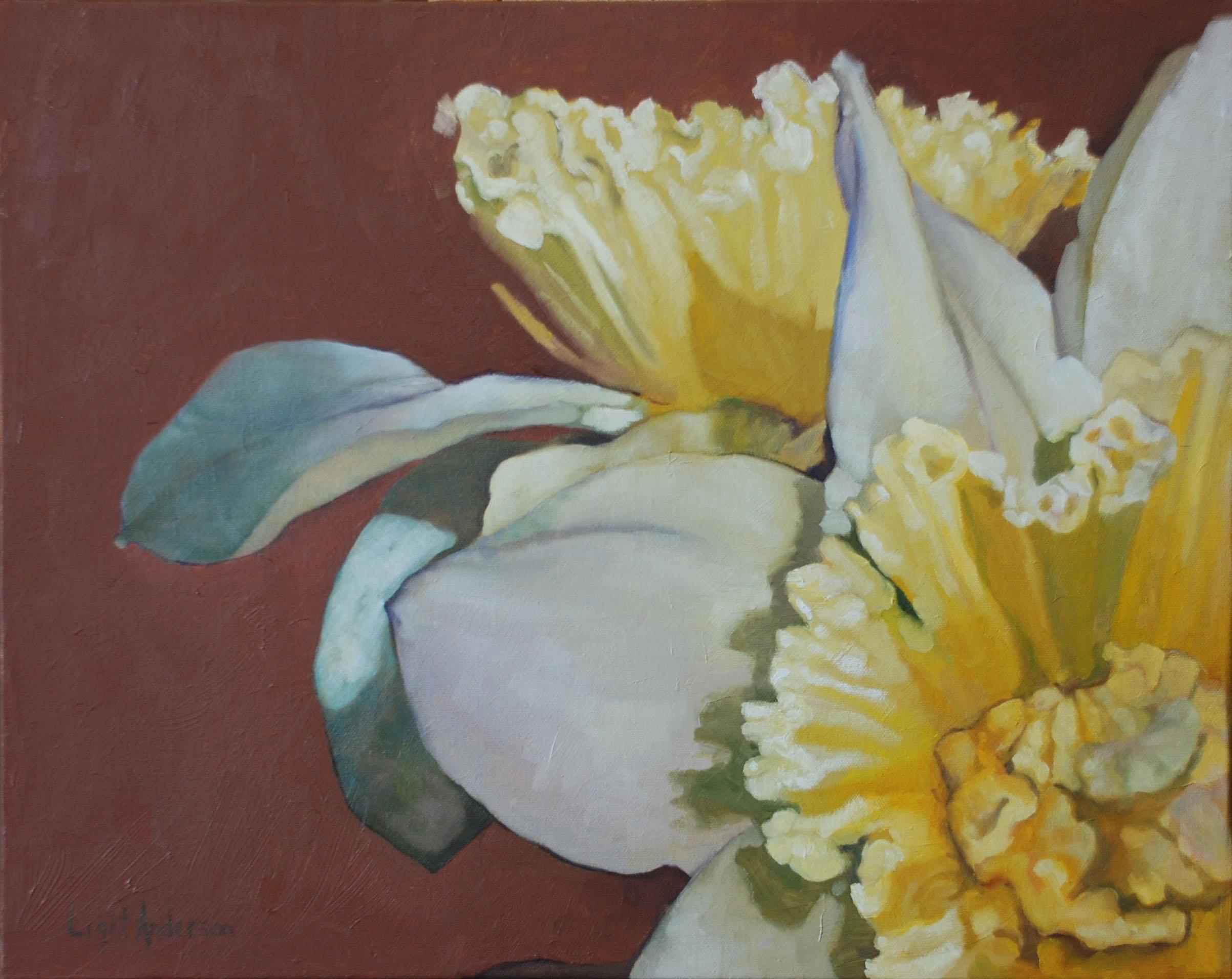 Daffodil on Brick
