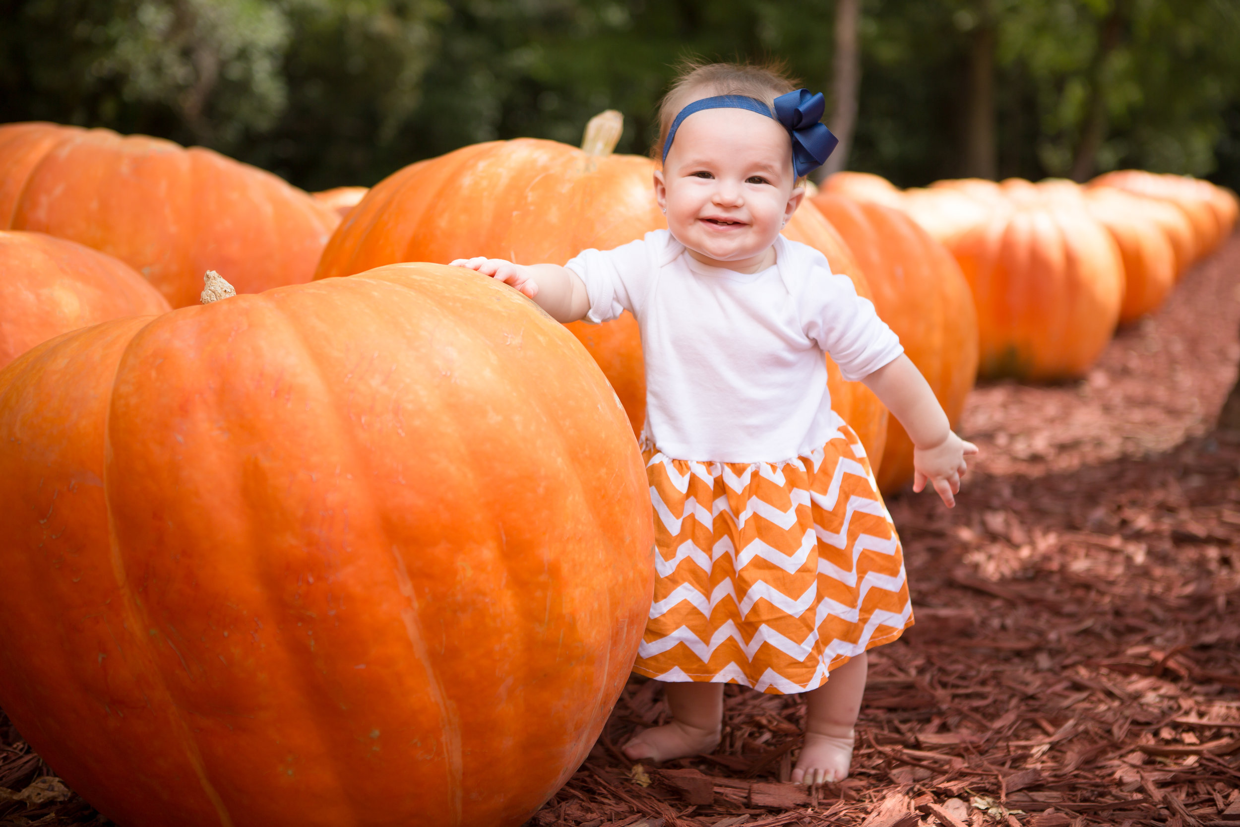Burts Pumpkin Patch and Hillcrest-71.jpg