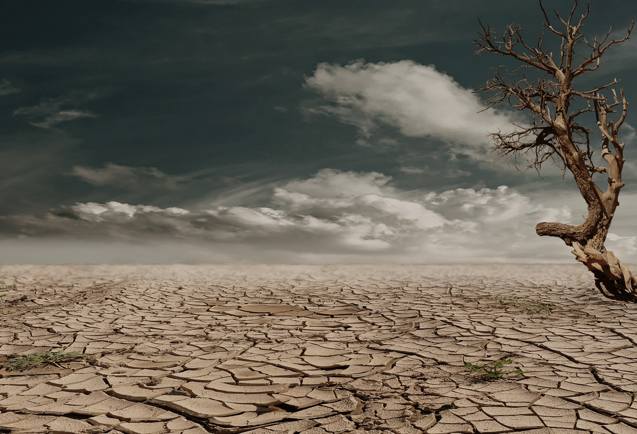 desert-drought-dehydrated-clay-soil-60013-1.jpg