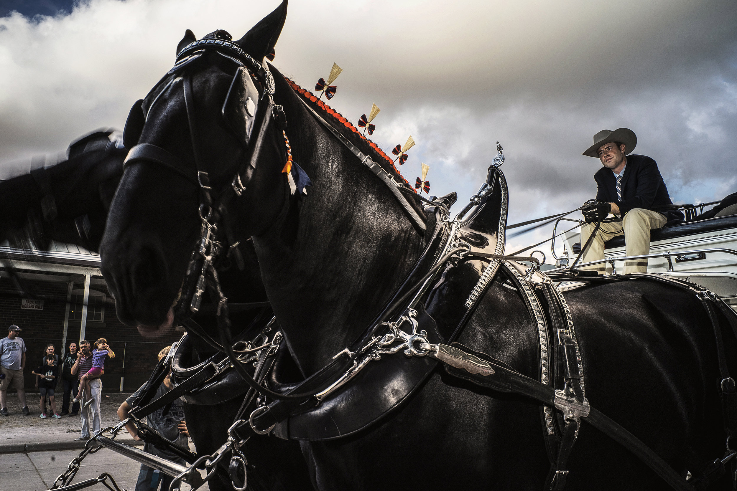 A coachman waits in line with his draft horses for a competition at the Jacobson Exhibition Center during the Iowa State Fair on Thursday, Aug. 16, 2018.