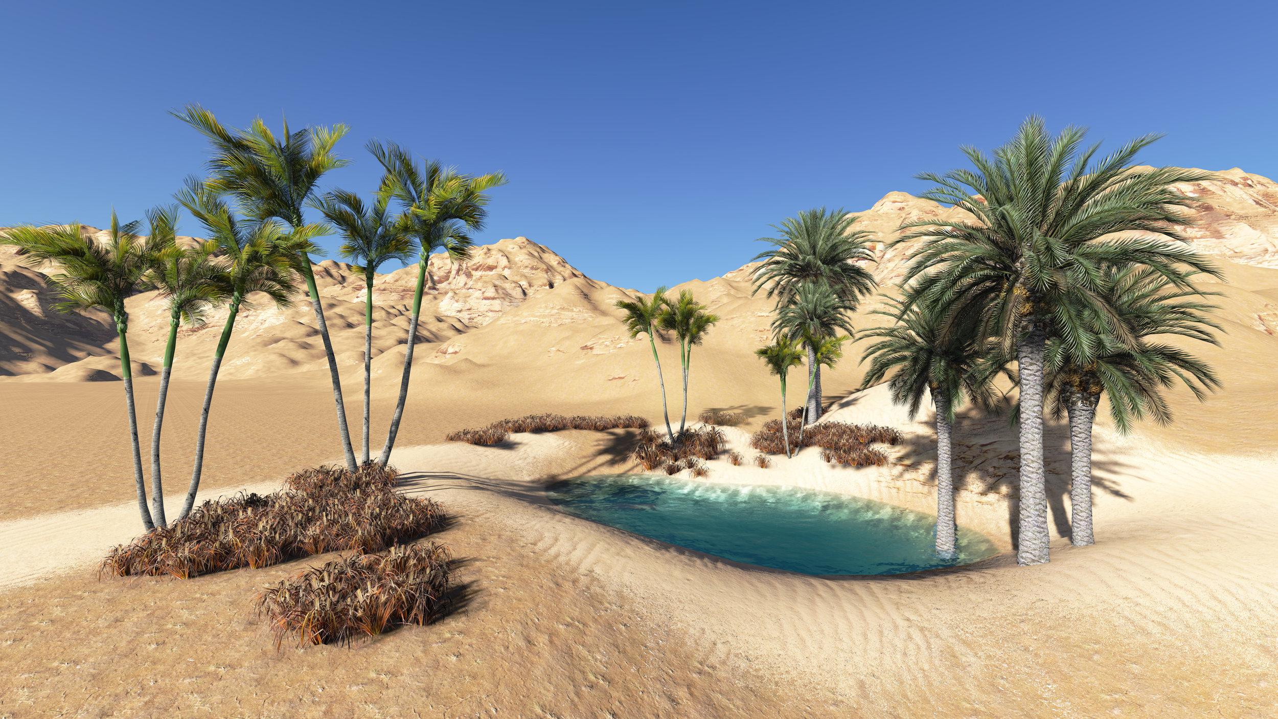 Animated desert.jpg