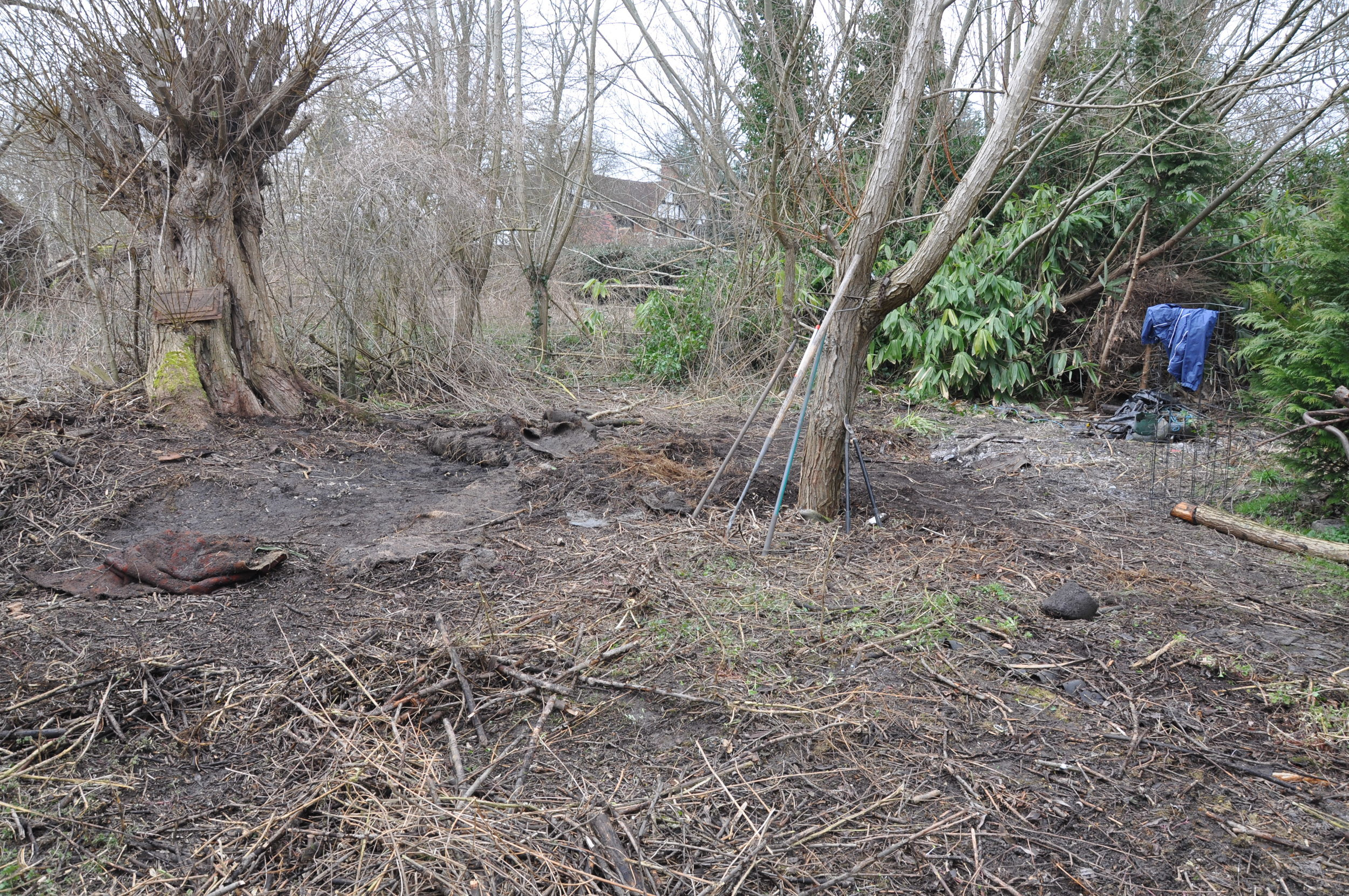 The 'secluded garden' in process of being cleared...still a work in progress...
