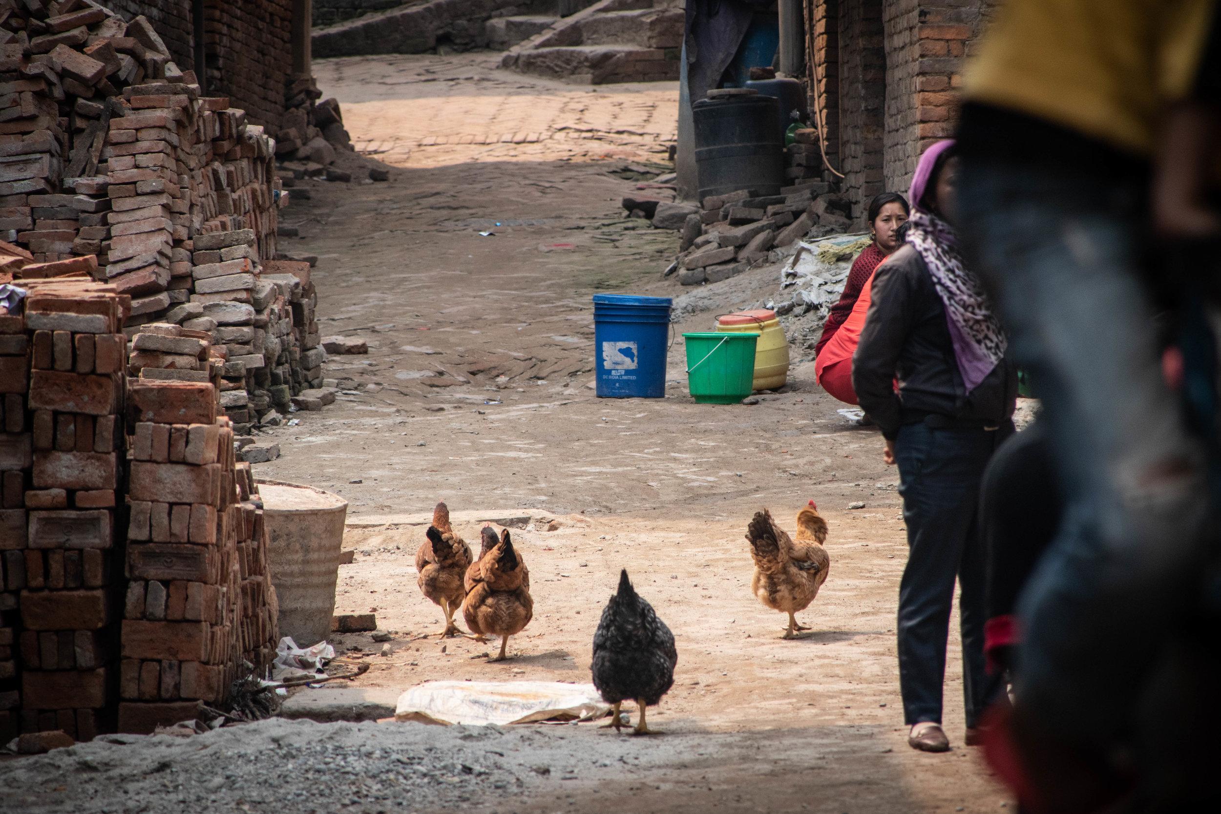 Bhaktapur 19 © SBGD-12.jpg
