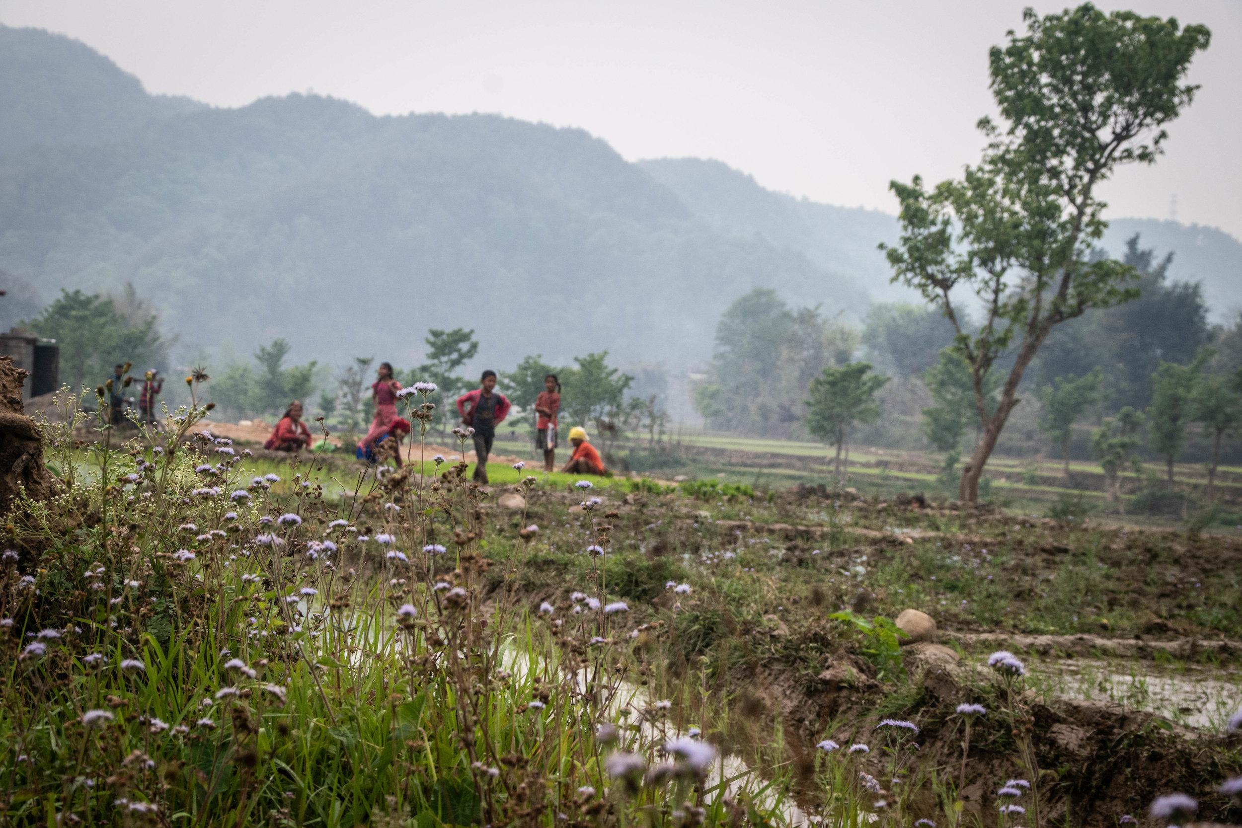 Chitwan 19 © SBGD-10.jpg