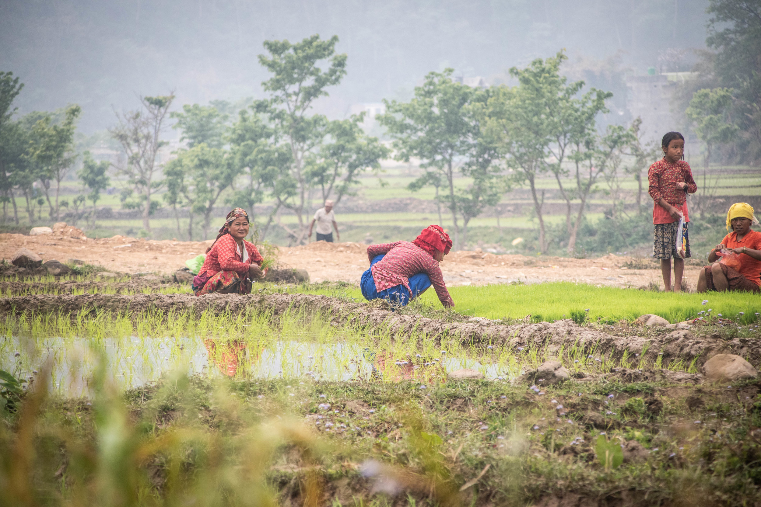 Chitwan 19 © SBGD-11.jpg