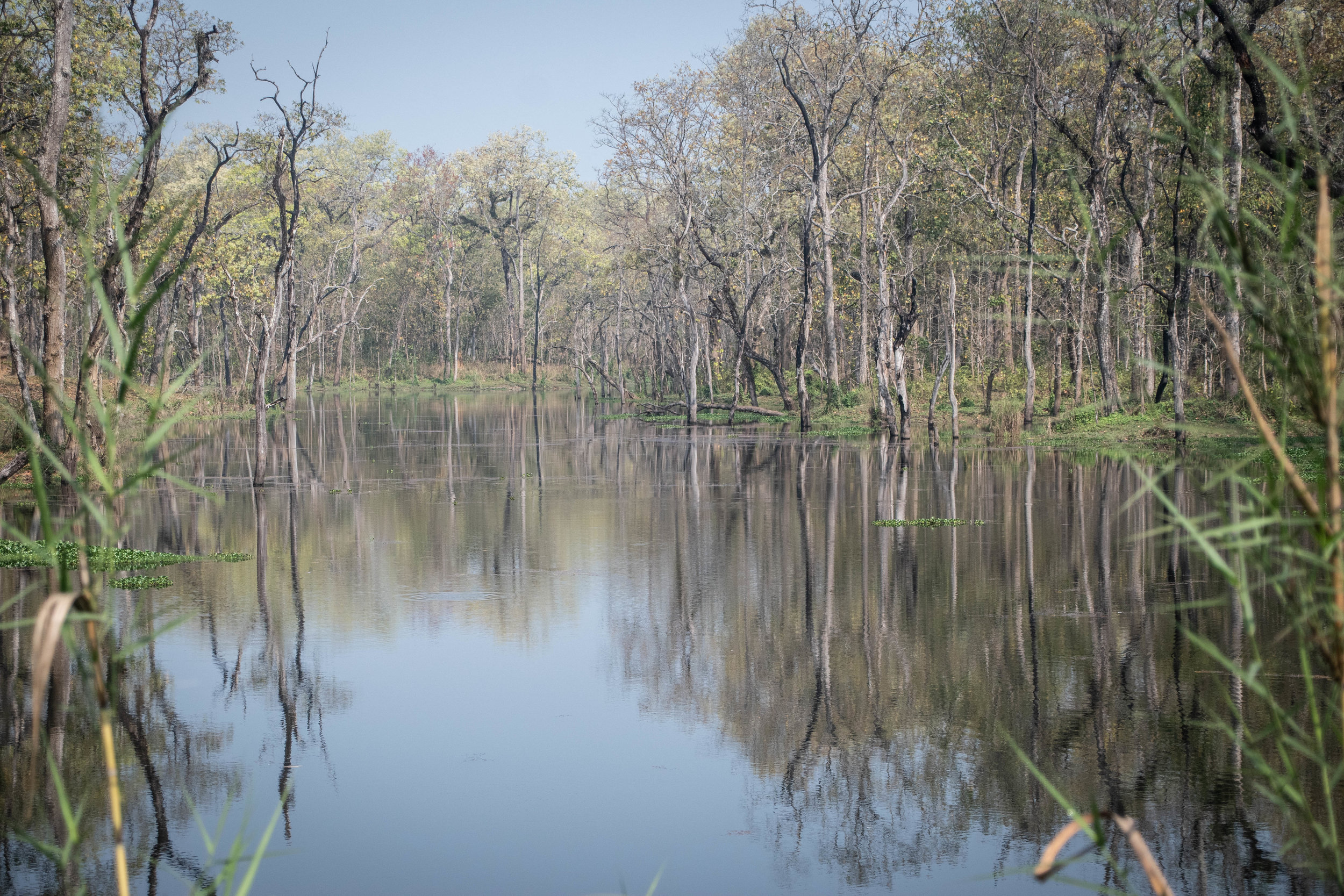 Chitwan Safari 19 © SBGD-23.jpg