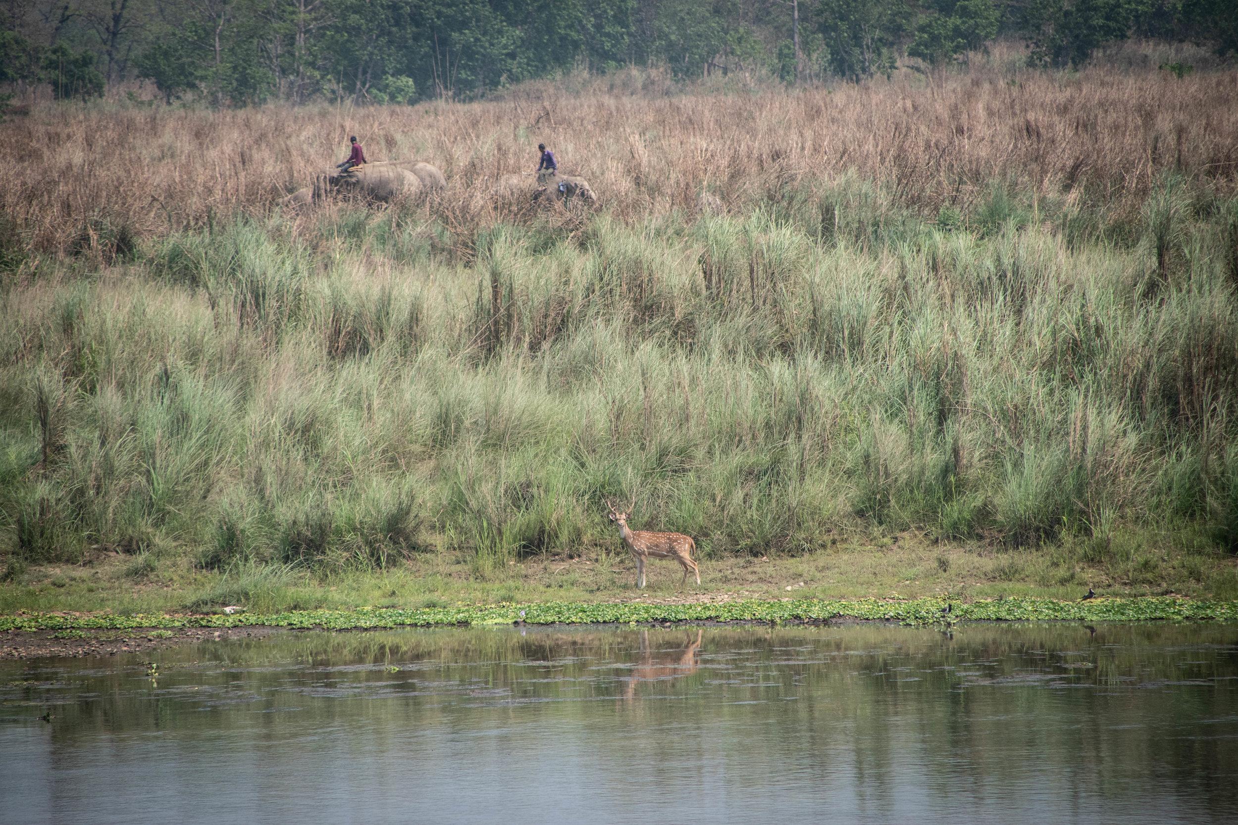 Chitwan Safari 19 © SBGD-47.jpg