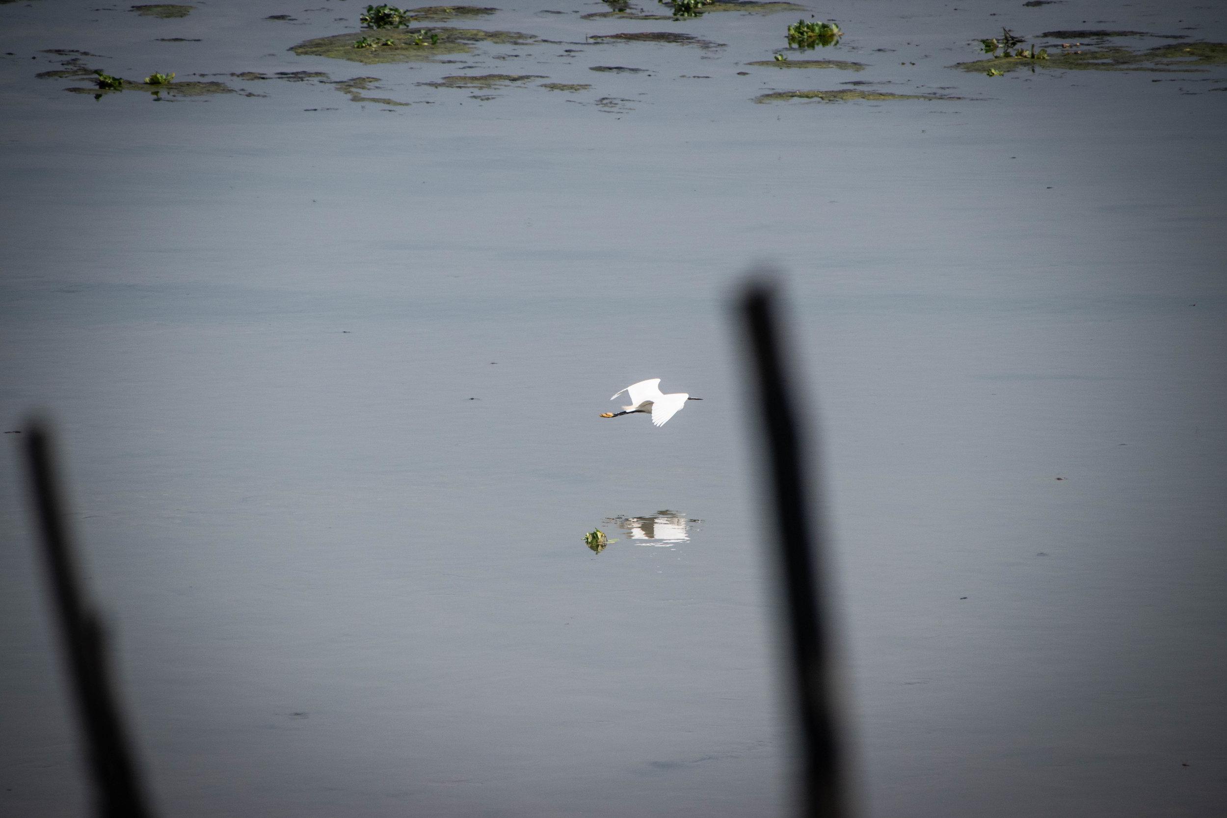 Chitwan Safari 19 © SBGD-63.jpg