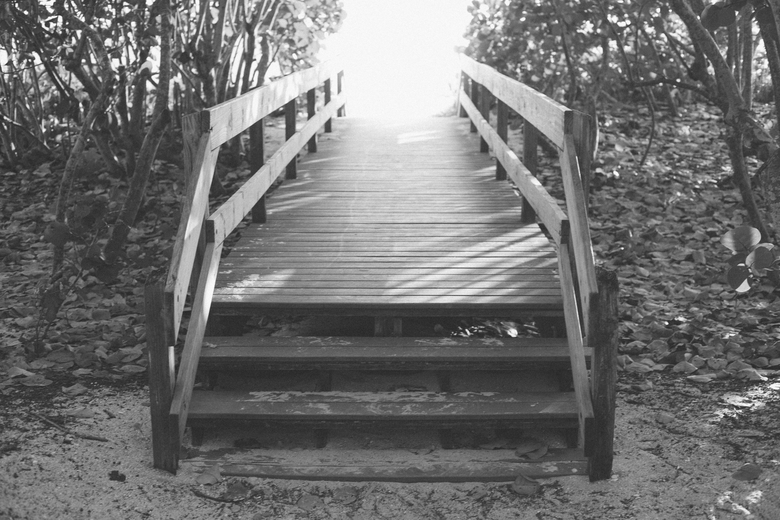 The 12 Steps -