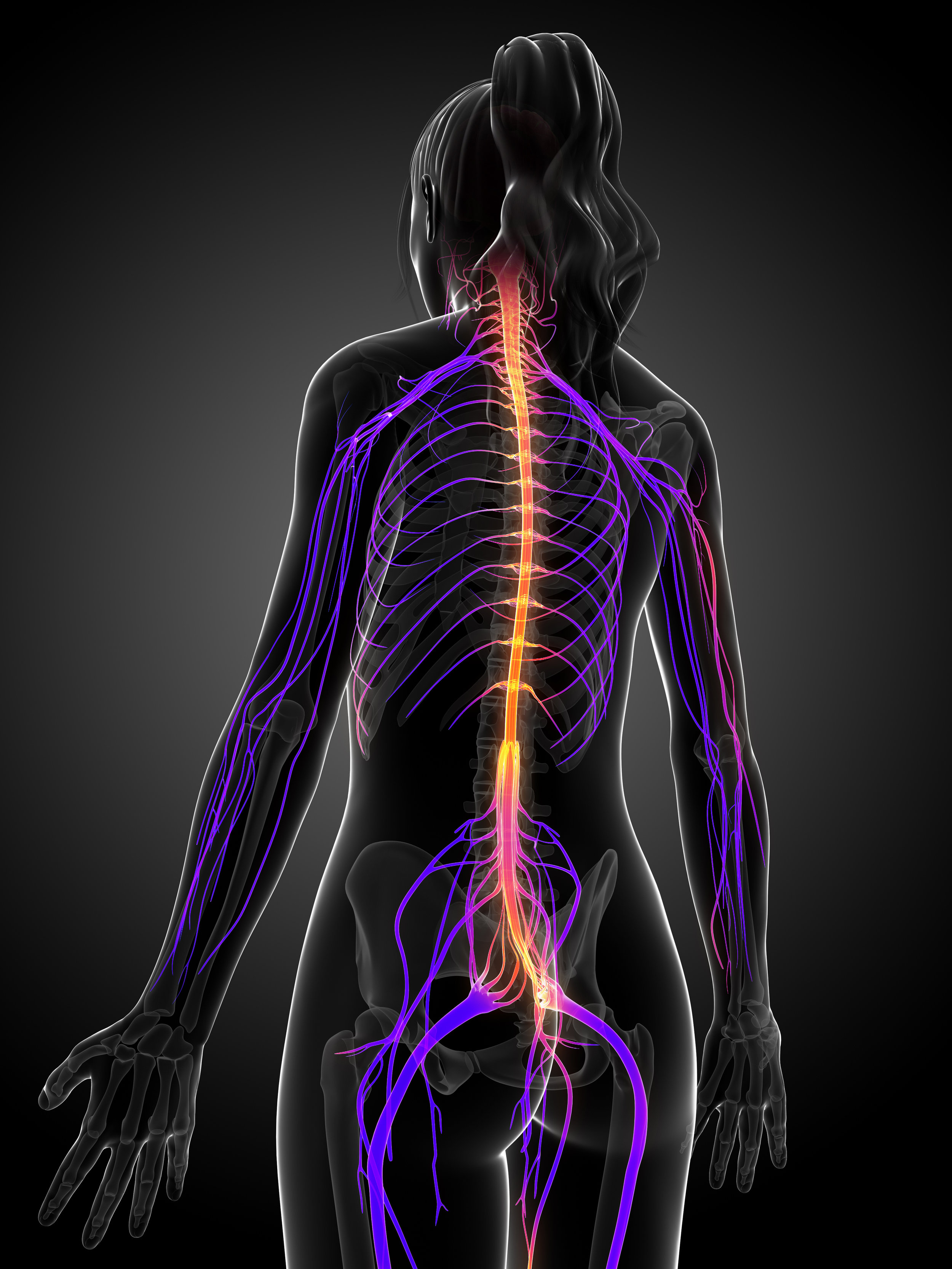 Chiropractic patient with nerve pain