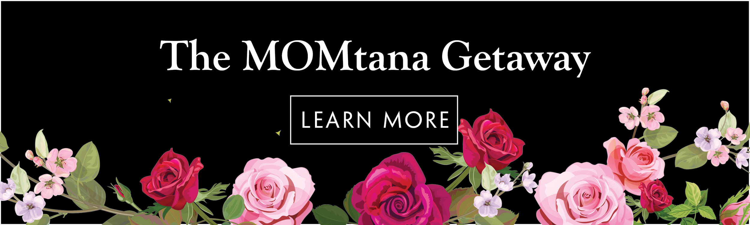 MOMtana Banner 2019.jpg