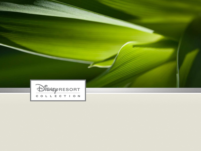 Disney_Resort_Branding_01.jpg