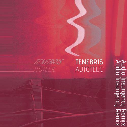 Tenebris - Autotelic (Audio Insurgency Remix) - BIBLIOTEKA019 - SINGLE